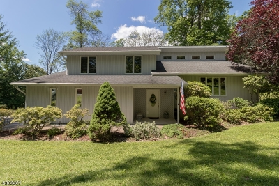 Holland Twp., Milford Boro Single Family Home For Sale: 309 Bellis Rd.