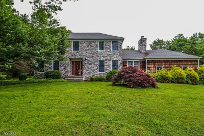 Alexandria Twp. Single Family Home For Sale: 33 Schick Rd