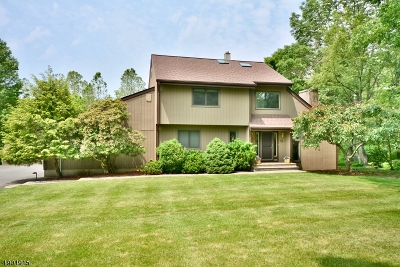 Clinton Twp. Single Family Home For Sale: 11 Charlotte Drive