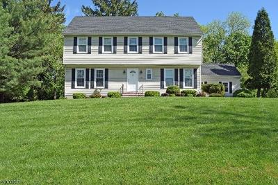 Bernards Twp. Single Family Home For Sale: 10 Compton Ct