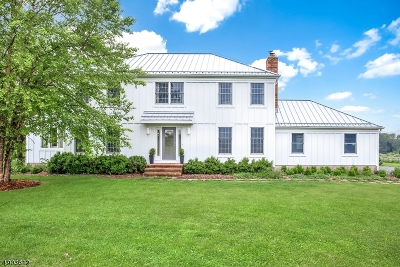 Franklin Twp. Single Family Home For Sale: 176 White Bridge Rd