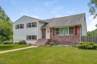 West Caldwell Twp. Single Family Home For Sale: 34 Mt Herman Way