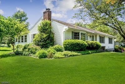 Bernards Twp. Single Family Home For Sale: 39 Crest Dr