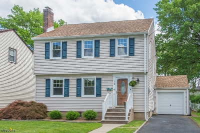 Bloomfield Twp. Single Family Home For Sale: 73 Ernst Ave