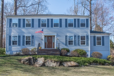 Randolph Twp. Single Family Home For Sale: 4 Laurel Hill Dr