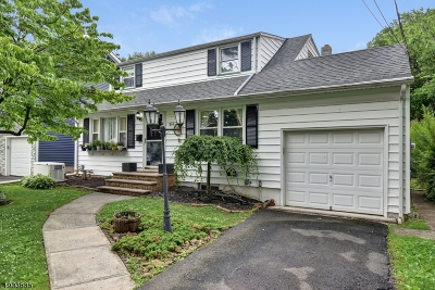 Scotch Plains Twp. Single Family Home For Sale: 315 Willow Ave