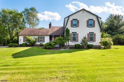 Readington Twp. Single Family Home For Sale: 12 Arrowhead Rd