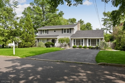 Hunterdon County Single Family Home For Sale: 11 Messig Rd