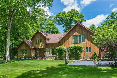 Boonton Twp. Single Family Home For Sale: 30 Farber Hill Rd