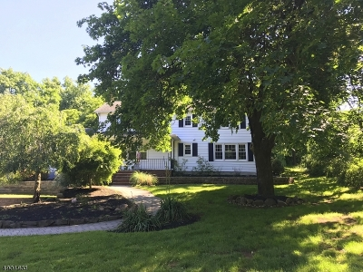 Montgomery Twp. Single Family Home For Sale: 439 River Rd