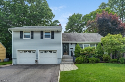 Cranford Twp. Single Family Home For Sale: 50 Lenhome Dr