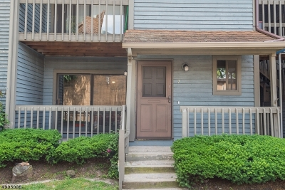 Belleville Twp. Condo/Townhouse For Sale: 309 Main St Unit 7