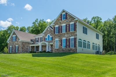 Mount Olive Twp. Single Family Home For Sale: 33 Sovereign Dr
