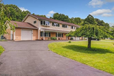 Hunterdon County Single Family Home For Sale: 70 Andersen Rd
