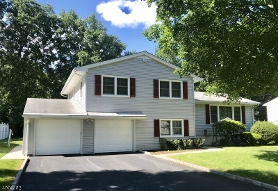 Cranford Twp. Single Family Home For Sale: 28 Rutgers Rd