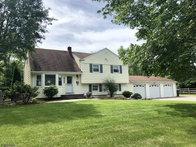Hillsborough Twp. Single Family Home For Sale: 107 Kimberly Rd