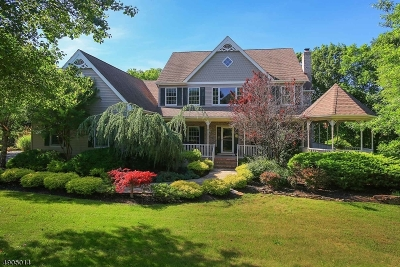 Hillsborough Twp. NJ Single Family Home For Sale: $749,900