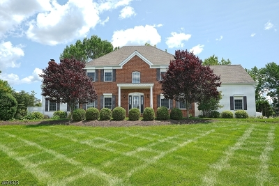 Alexandria Twp. Single Family Home For Sale: 10 Hog Hollow Rd