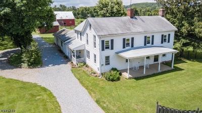 Delaware Twp. Single Family Home For Sale: 309 Rosemont Ringoes Rd