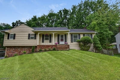 Morris Twp. Single Family Home For Sale: 6 Richlyn Ct