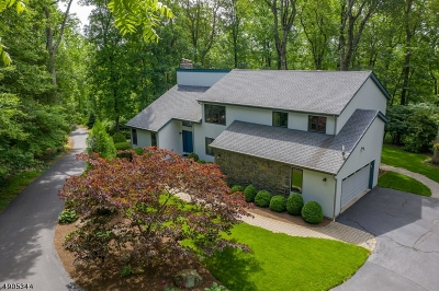Hunterdon County Single Family Home For Sale: 73 Sliker Rd