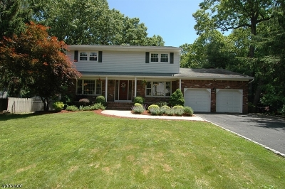 Parsippany-Troy Hills Twp. Single Family Home For Sale: 29 Ironwood Dr