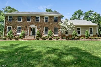 Mendham Twp. NJ Single Family Home For Sale: $1,099,000