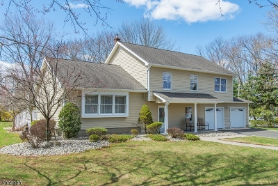 Bernards Twp., Bernardsville Boro Single Family Home For Sale: 12 Battle Hill Rd