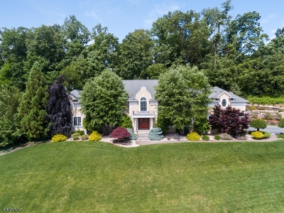 Montville Twp. Single Family Home For Sale: 15 Tara Ln