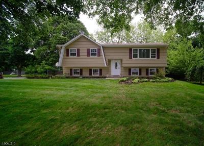 Warren County Single Family Home For Sale: 604 E Baldwin St