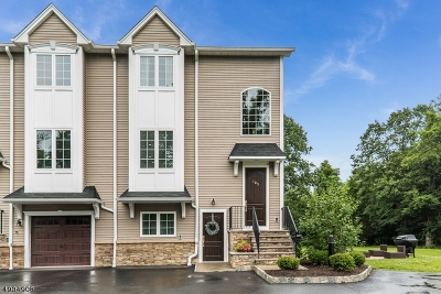 Mount Olive Twp. Condo/Townhouse For Sale: 103 Mine Hill Rd