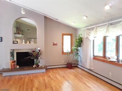 Parsippany-Troy Hills Twp. Single Family Home For Sale: 241 Reynolds Ave