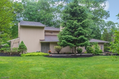Boonton Twp. Single Family Home For Sale: 11 Birchwood Ln
