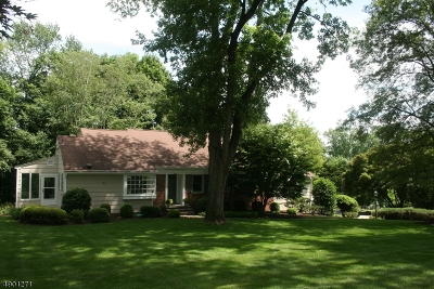 Bernards Twp., Bernardsville Boro Single Family Home For Sale: 11 Windwood Rd