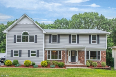 Parsippany-Troy Hills Twp. Single Family Home For Sale: 64 Whitewood Dr