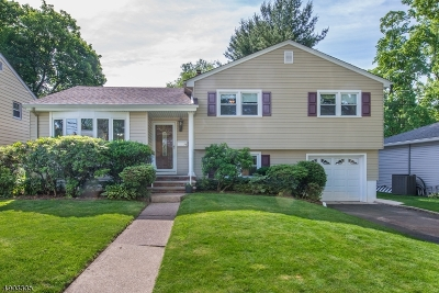 Bloomfield Twp. Single Family Home For Sale: 76 Bellevue Ter