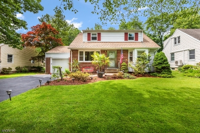 Fanwood Boro Single Family Home For Sale: 226 S Martine Ave