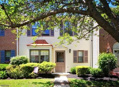 Bedminster Twp., Bridgewater Twp., Bernards Twp., Raritan Boro Rental For Rent: 427 Penns Way
