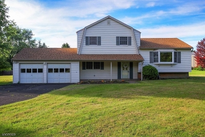 Hillsborough Twp. Single Family Home For Sale: 3 Spring Valley Dr