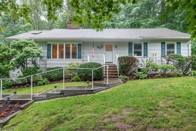 Parsippany-Troy Hills Twp. Single Family Home For Sale: 156 Red Gate Rd