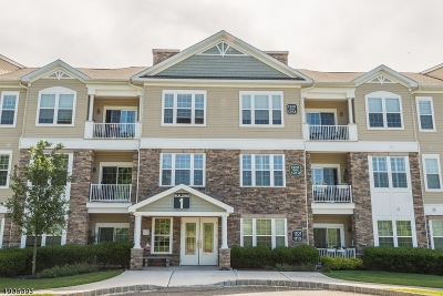 Rockaway Twp. Condo/Townhouse For Sale: 1207 Hale Dr