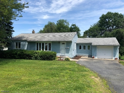 Parsippany-Troy Hills Twp. Single Family Home For Sale: 103 Hillside Ter