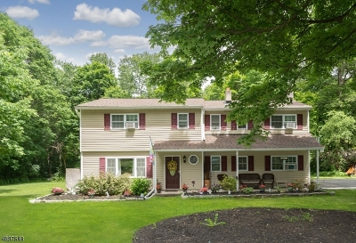 Vernon Twp. Single Family Home For Sale: 13 Beaver Brook Dr