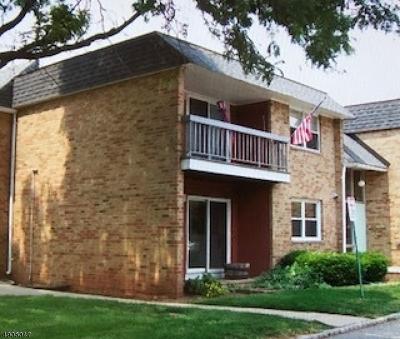 Hillsborough Twp. NJ Condo/Townhouse For Sale: $189,000