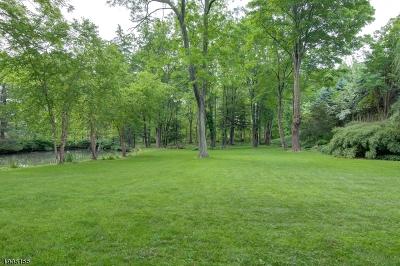 Mendham Boro NJ Single Family Home For Sale: $625,000