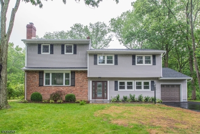 Berkeley Heights Twp. Single Family Home For Sale: 99 River Bend Rd