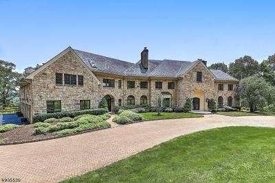 Mendham Twp. NJ Single Family Home For Sale: $3,999,000