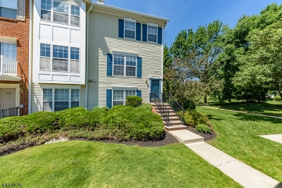 Bridgewater Twp. Condo/Townhouse For Sale: 3206 French Dr