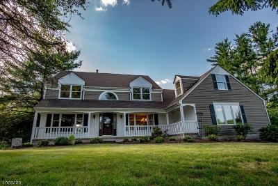 Flemington Boro, Raritan Twp. Single Family Home For Sale: 7 Knoll Ct