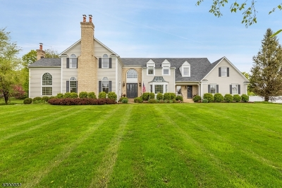Chester Twp. NJ Single Family Home For Sale: $998,800